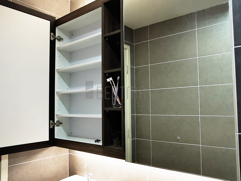 Bathroom with Mirrored Cabinet design