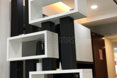 Living Room with Divider design